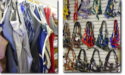 Blankets, Halters, Boots and Other Horse Clothing